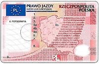 Wzór prawa jazdy 2013