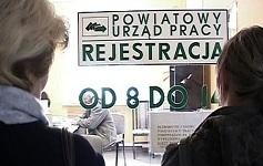 urzad pracy pl